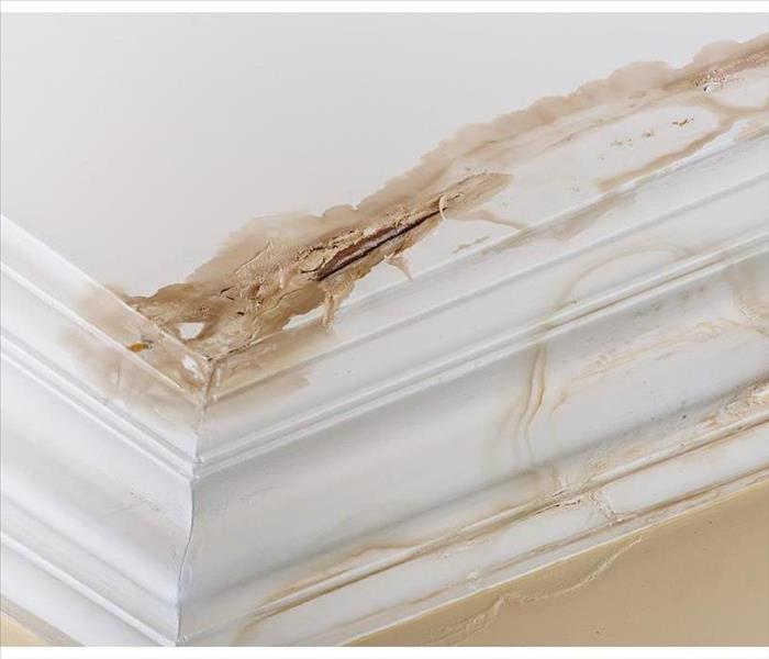 Mold and water damage on wall and baseboard