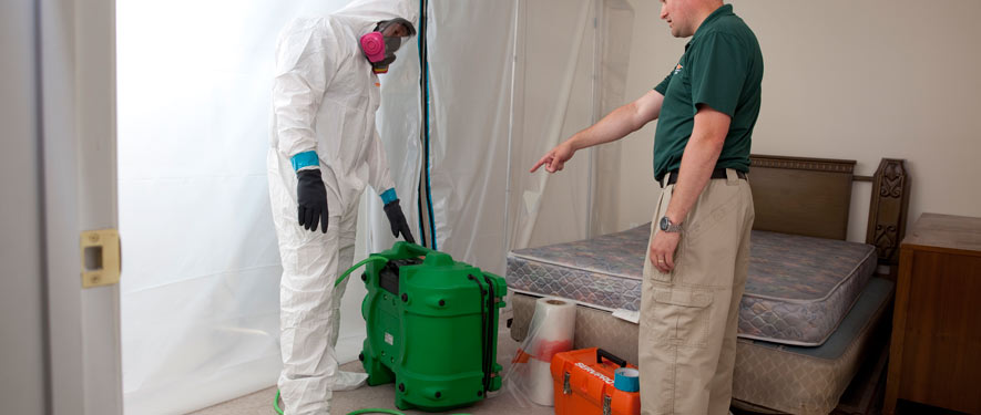 Jacksonville, FL mold removal process
